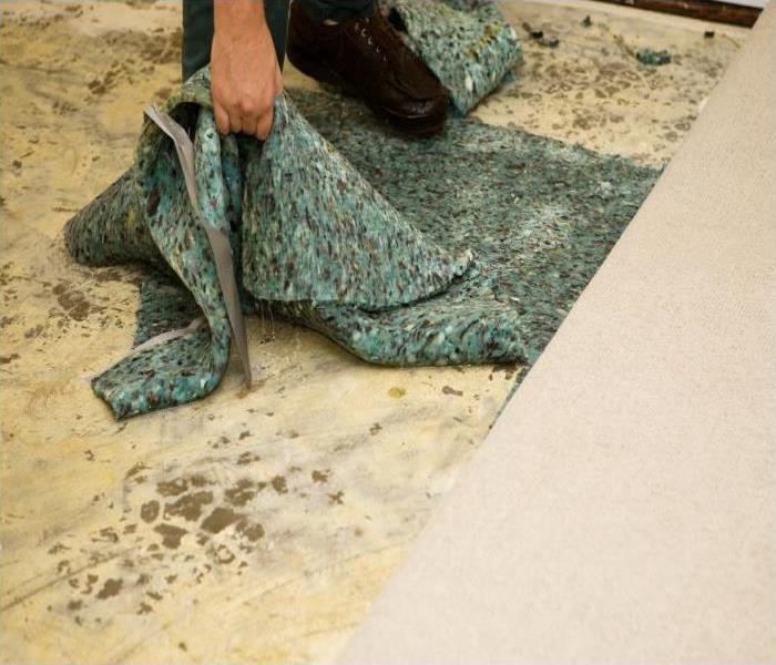 Storm Damage Our Experts In Englewood Can Save Your Flood Damaged Carpet