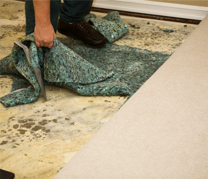 wet carpeting and carpet pad