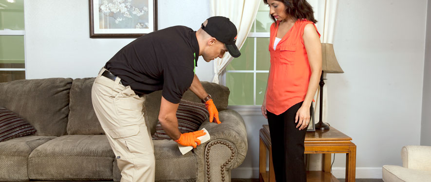 Teaneck, NJ carpet upholstery cleaning