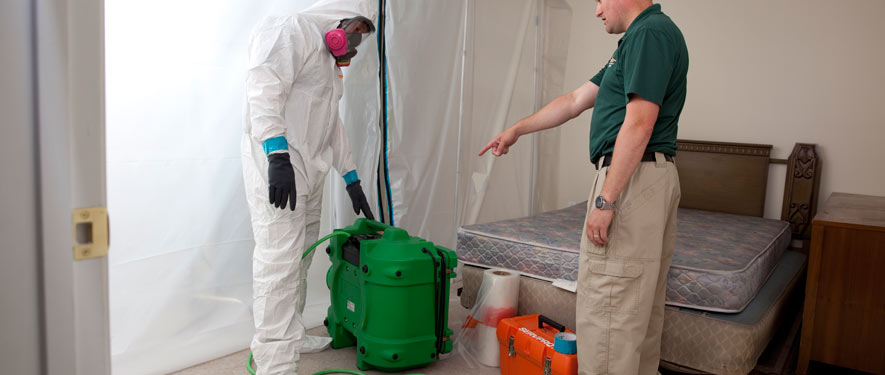 Teaneck, NJ mold removal process